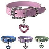 Lushpetz Hundehalsband aus Leder mit gratis Herzanhänger in den Größen XS, Small, Medium und Large (Mittel, Pink)