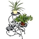 """HLC Armazón de metal de bonsáis,diseño """"S"""", estilo retro,color negro"""