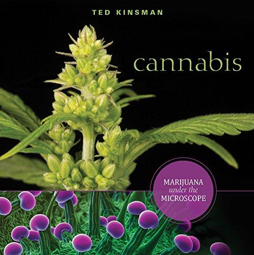 Cannabis: Marijuana under the Microscope por Ted Kinsman