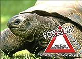 INDIGOS UG - Türschild FunSchild - SE850 DIN A5 ACHTUNG Schildkröten - für Käfig, Zwinger, Haustier, Tür, Tier, Aquarium - aus hochwertigem Alu-Dibond beschriftet sehr stabil