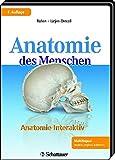 Anatomie interaktiv: Leitungsbahnen und Muskulatur Mit Lernprogramm und Sprachtrainer CD-ROM zum Fotografischen Atlas Anatomie des Menschen, ... Atlas Anatomie des Menschen