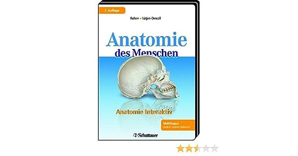 Anatomie interaktiv: Leitungsbahnen und Muskulatur Mit Lernprogramm ...