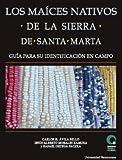 Los maices nativos de la sierra de Santa Marta