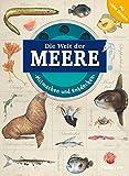 Mitmachen und Entdecken: Meere