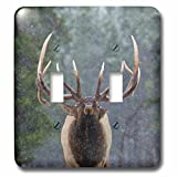 3D Rose LSP_231973_2 Rocky Mountain Bull Elk Making Face Doppel-Kippschalter, mehrfarbig