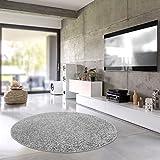 Shaggy-Teppich | Flauschiger Hochflor fürs Wohnzimmer, Schlafzimmer oder Kinderzimmer | einfarbig, schadstoffgeprüft, allergikergeeignet in Farbe: Grau; Größe: 120 cm rund