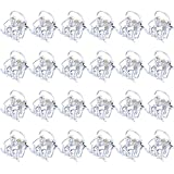 24 Stück Mini Haarspangen Kunststoff Haargreifer Pins Schellen für Mädchen und Damen (Klar)
