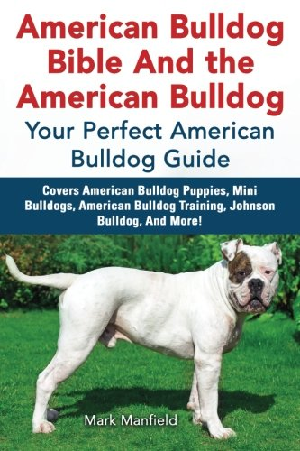 American Bulldog Bible And the American Bulldog: Your Perfect American Bulldog Guide Covers American Bulldog Puppies…