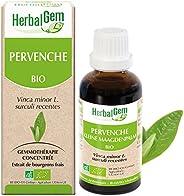 HerbalGem|Pervenche Bio|Macérats-Mères de Gemmothérapie Concentrée|30 ml