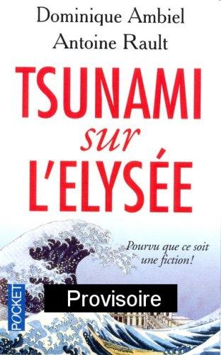 Tsunami sur l'Elysée : Pourvu que ce soit une fiction !
