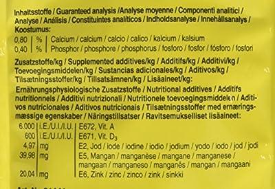 Vitakraft Budgie Food 500 g (Pack of 6) from Vitakraft