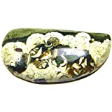Urancia® Rainforest Jasper Australian Rainforest Jasper Rhyolite Rainforest Rhyolite Stone Of Resolution Spotted Stone Rhyolite Jasper Spherulitic Rhyolite Agatised Rhyolite Green Rhyolite 16.1Cts For Ring