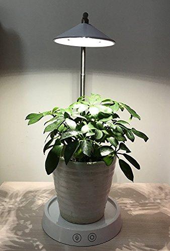 LED-Pflanzenlampe mit Blumentöpfe , MaiMai Touch Control verstellbar Lifting Lampe für Zimmerpflanzen Hydrokultur Gewächshaus Garten-Computer Schreibtisch Büro Aufgabe Beleuchtung USB Nachttisch Lampe