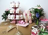 Naschlabor Candy Bar im Vintage Style – Die Süßigkeiten Überraschung für deine Hochzeit in rosa und mint mit dem passenden Zubehör – Für ca. 100 Personen