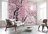 Komar Xxl4-046Komar Bloom Cherry Blossom Papier peint Scenic-(368x 248cm)-Blanc, Rose (1pièce)