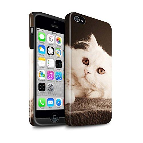 Stuff4® Glanz Harten Stoßfest Hülle/Case für Apple iPhone 4/4S / Perser Lange Haare Katze Muster Katze/Katzenrassen Kollektion