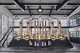 Monkey 47 Schwarzwald Dry Gin – Harmonischer Gin mit Wacholderaroma & frischen Zitronen- und Fruchtnoten – Britische Tradition, indische Exotik & Schwarzwälder Handwerk – 1 x 0,5 L - 5