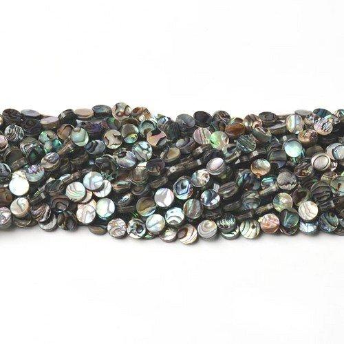 Charming Beads Strang 45+ Regenbogen Abalone Muschel 8mm Flachrund Perlen CB45702