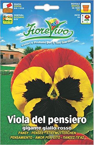 Hortus 60SDFV044 Fiorevivo Viola Pensiero Gigante, Giallo/Rosso, 13x0.2x20 cm
