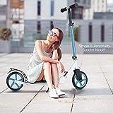 Kecoo Scooter Roller 200mm Big Wheel für Erwachsene Cityroller Teenager Kickscooter (Blau)