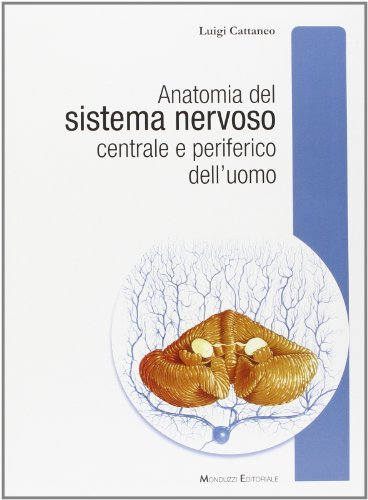 Anatomia del sistema nervoso centrale e periferico dell'uomo