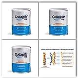 Collagile® dog 225g - Bioaktive Kollagenpeptide in Lebensmittelqualität (3 Dosen)
