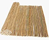 bambus-discount.com Tonkin Bambusrohr Rollzaun, gelblich Natur flexibel verbunden mit 240x240cm Durch. 1,4-1,6cm