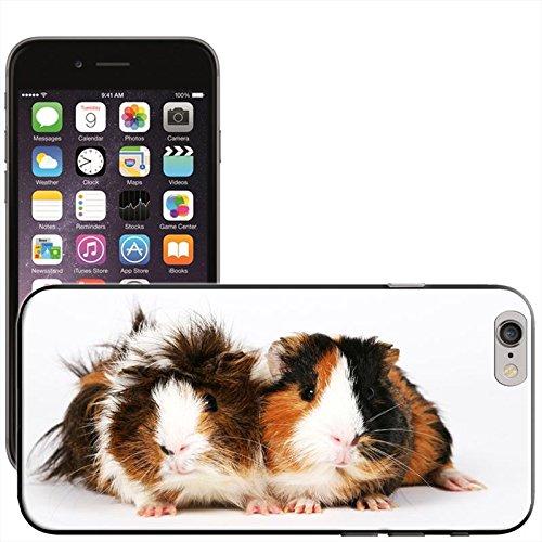 rongeurs-coque-arriere-rigide-detachable-pour-apple-iphone-modeles-plastique-guinea-pigs-iphone-6-pl