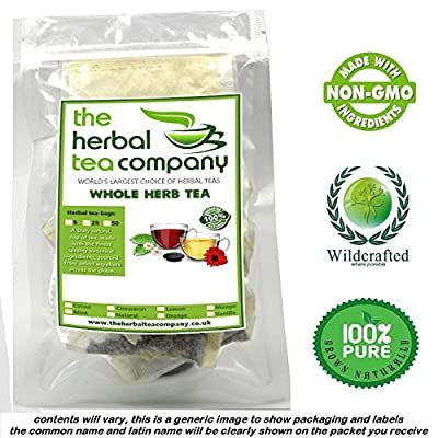 Bilberries Fruit 100% Pure Herb MAX STRENGTH Tea Bags + Vanilla 5 Pack