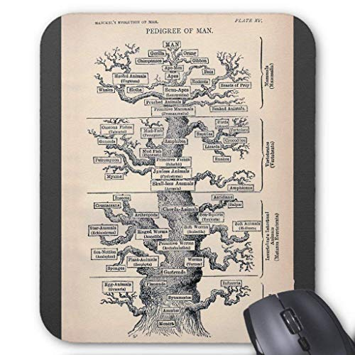 Wristband Tree of Life/Pedigree of Man Mouse Pad Computer Accessories Anti-Friction 18X22