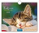 """Notizkalender """"Katzen"""" 2020: 20 x 16 cm, mit Postkarten und Sprüchen -"""
