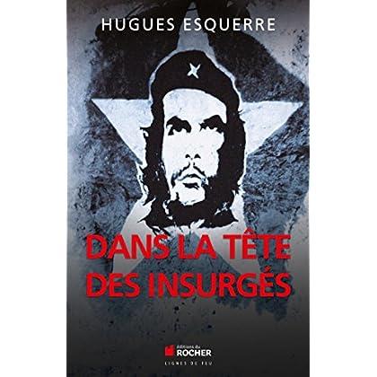 Dans la tête des insurgés