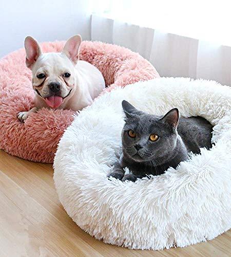 Hazelsha Rundes Haustierbett, Plüsch-Donut-Kissen, für kleine Rassen, Welpen, Katzen, Gelenk-Relief, verbessert den Schlaf -