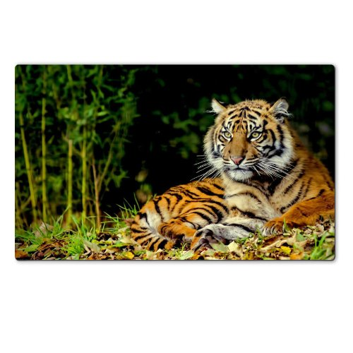 Majestic Tiger Animal Resting Bamboo Table Mats Customized Made to Order Support Ready 28 6/16 Inch (720mm) X 17 11/16 Inch (450mm) X 1/8 Inch (4mm) High Quality Eco Friendly Cloth with Neoprene Rubber MSD Deskmat Desktop Mousepad Laptop Mousepads Comfortable Computer Place Play Mat Cute Gaming Mouse pads - 4 Mm Tiger