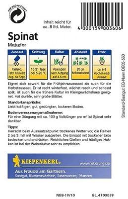 Kiepenkerl Spinat Matador von Kiepenkerl - Du und dein Garten