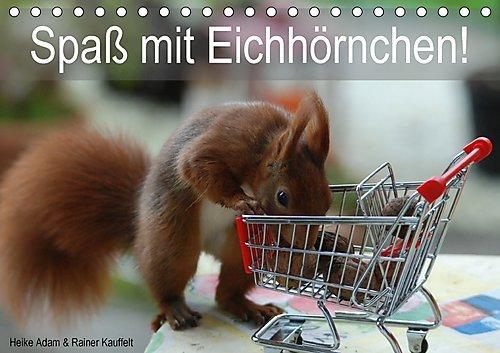 Preisvergleich Produktbild Spaß mit Eichhörnchen! (Tischkalender 2017 DIN A5 quer): Eichhörnchenfotografie, der Jahreszeit entsprechend lustig in Szene gesetzt. (Monatskalender, 14 Seiten ) (CALVENDO Tiere)