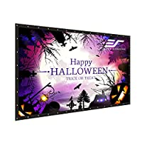 """Elite Screens Elite Screens DIY PRO, Indoor Outdoor Portable Projector screen PVC 160-inch 16:9, 8K 4K Ultra HD 3D Movie Theater Cinema 160"""" Projection Screen with Grommets, Roll-Up Hang Anywhere, DIY"""