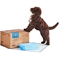 Milo & Misty 56 x 56 cm Dog Puppy Super-Absorbent Training Pads with 5 Layer Protection - Pack of 100