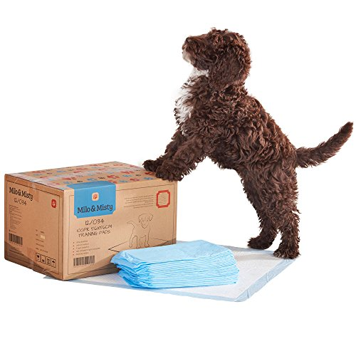 milo-misty-56-x-56-cm-dog-puppy-super-absorbent-training-pads-with-5-layer-protection-pack-of-100