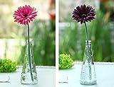 Bluelover Farbloses Glasvase Mit Flasche Cap Schneiden Vase Flower Arrangement Holzhaus-Dekor Ornamente