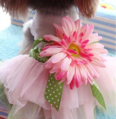 Kingnew Daisy Flower Bow Tutu Kleid Spitzenrock, Katze Haustier Hund Prinzessin Kostüm Kleidung Hund Bekleidung-Größe L