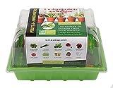 Mini Potager 'Un Jardin dans ma Cuisine' - Mini-Serre avec 6 sachets de Graines 'Prêt-à-Arroser', Pots et Accessoires - Kit à Faire Pousser