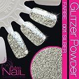 NAILART GLITTER -Glitzer Powder - 001 SILBER (Glitzer Mittel / Glitzer 0.4 mm)
