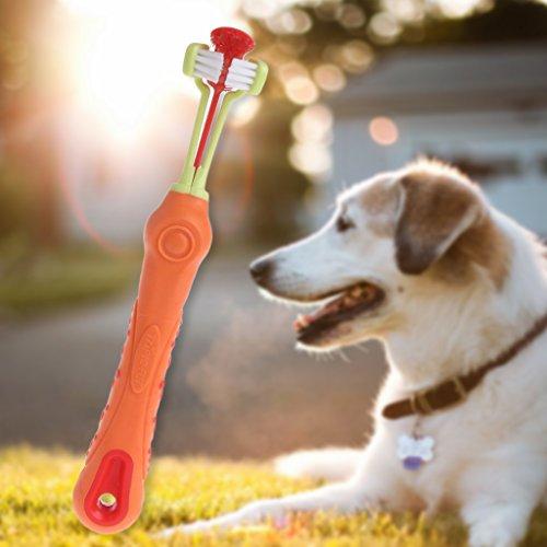 f Drei Zahnbürste Kopf Pet Zahnbürste, Hunde Bürste Ergänzung Schlechten Atem Zahnstein Zähne Care Hund Katze Reinigung Mund ()