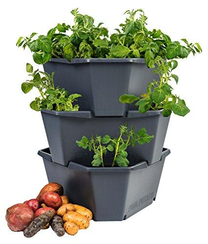 Gusta Garden Paul Potato Outdoor Blumentopf Anthrazit Hoch Aus Kunststoff | Starter-Set 3 Ebenen Stapelbar Kartoffel-Turm Hochbeet Pflanzgefäß Für Balkon Garten | Wetterfest Grau