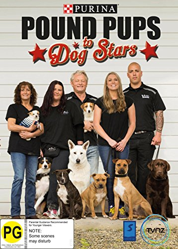 purina-pound-pups-to-dog-stars-pal-region-0
