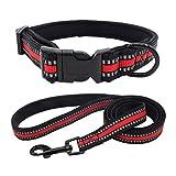 Hawkimin Haustier Hunde Halsband Mikrofaser Tuch Einstellbar Praktisch Mit Schnalle Halskette (1x Hundehalsband + 1x Seil)