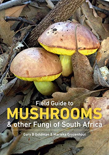 Field Guide to Mushrooms & Other Fungi of South Africa (English Edition)