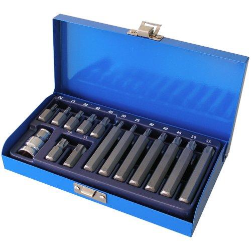 Schraubendreher-Satz Schraubenschlüssel-Einsatz Bit-Satz T-Profil TORX®T20 T25 T30 T40 T45 T50 T55 15-tlg.