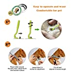sevicat [2018 upgrade] dog anti flea & tick collar 6 months effectiveness protection for dogs and puppies, adjustable fits (for dog) SEVICAT [2018 Upgrade] Dog Anti Flea & Tick Collar 6 Months Effectiveness Protection for Dogs and Puppies, Adjustable Fits (For Dog) 51052XzhJRL